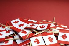 Free Canada Red And White Maple Leaf National Toothpick Flags Royalty Free Stock Photography - 33710037