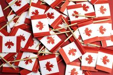 Free Canada Red And White Maple Leaf National Toothpick Flags - Horizontal. Stock Image - 33710071