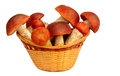Free Mushrooms In A Wicker Basket On A White Background. Stock Photo - 33720920