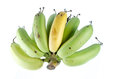 Free Ripe Banana Stock Photography - 33738382