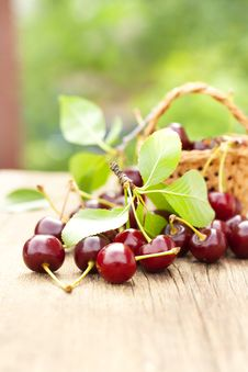 Free Basket Of Cherries Stock Image - 33731971