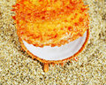 Free The Orange Shell Royalty Free Stock Photography - 33756417