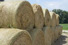 Free Round Hay Bales Stacked Ready Royalty Free Stock Photography - 33758617