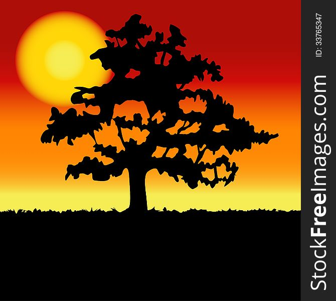 Sunset landscape with tree silhouette.
