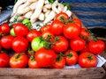 Free Tomatoes Stock Image - 33775691