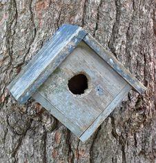 Old Birdhouse On A Tree Stock Photos