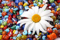 Free Colorful Beads And Daisy Royalty Free Stock Photo - 3388945