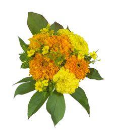 Free Bouquet 08 Stock Photo - 3381720