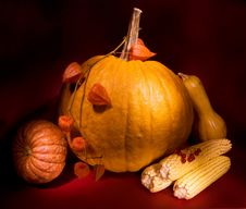 Free Autumn Harvest Stock Photo - 3383070