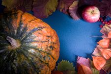 Free Autumn Harvest Frame Royalty Free Stock Images - 3383769