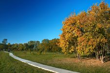Free Autumn In The Park Royalty Free Stock Image - 3387386