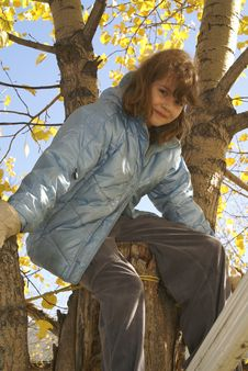 Free Girl In Tree Autumn Royalty Free Stock Image - 3387576