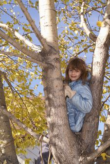 Free Girl Autumn Tree 3 Royalty Free Stock Image - 3387836