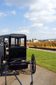 Free Amish Horse-drawn Buggy Stock Image - 3388151