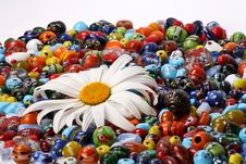 Free Colorful Beads And Daisy Royalty Free Stock Photography - 3388967