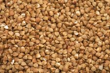 Free Buckwheat Cereals Stock Image - 3389741