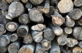 Free Pile Of Wood Logs Stock Image - 33809721