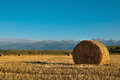 Free Straw Bale Wheat Field Stock Images - 33809724
