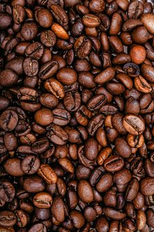 Free Coffee Beans Stock Image - 33807681