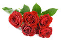 Free Red Roses Royalty Free Stock Photography - 33814107