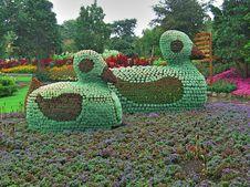 Free Ducks Made Of Flowers Stock Photos - 33813013