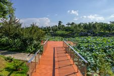 Free Wooden Scenic Path  In Garden Stock Photos - 33821123