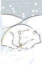 Free Polar Bear Stock Photography - 33868342