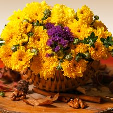 Free Autumn Flowers Stock Image - 33869631
