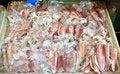 Free Fresh Squids 3 Stock Photo - 33871370