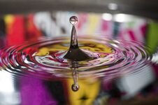 Free Waterdrops Stock Photo - 33872860
