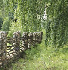 Old Fence. Stock Photos
