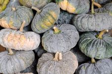 Free Pumpkins Stock Images - 33899894
