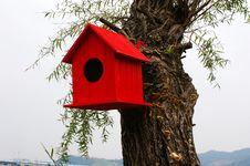Free Birdnest On  Tree Stock Photography - 3391312