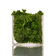 Free Glass Of Fresh Parsley Stock Images - 3391544