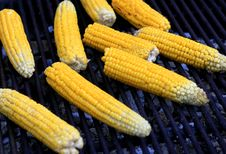 Free Grilled Fresh Corn Royalty Free Stock Photo - 3394335