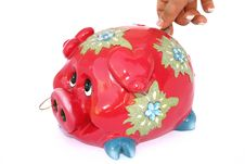 Free Piggy Bank Stock Images - 3397514