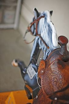 Free Horse Ride Stock Photos - 3398503