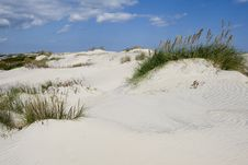 Free Dunes Of Hatteras Royalty Free Stock Photography - 3398537