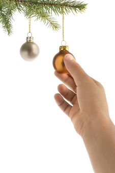 Free Christmas Tree, Hand And Balls Royalty Free Stock Images - 3399459