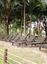 Free Chair  In The Garden At Resort Stock Images - 33909854