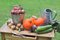 Free Seasonal Vegetable And Apples Stock Photo - 33918010