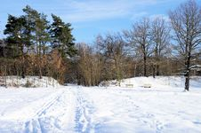 Free Winter Landscape Stock Photos - 33939873