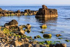 Free Rocky Sea Coast Horizon With Seaweed Stock Photography - 33940832