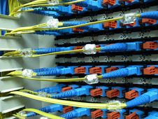 Free Optical Fiber Patch Panel Stock Images - 33958244