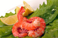Free Salad Of Shrimp, Mixed Greens Stock Photography - 33966542