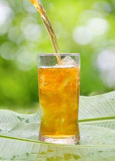 Free Iced Tea Royalty Free Stock Photos - 33982118