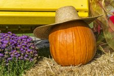 Free Pumpkin And Hat Royalty Free Stock Photo - 33993085