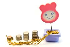 Smile  Pot ,paddy And Coins Stock Photography