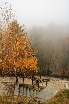 Free Foggy Autumn Park With Yellowed Tree And Steps Stock Photography - 33996372
