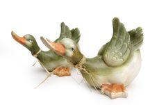 Flying Ducks Royalty Free Stock Photo